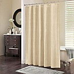 Chevi Mesh Jacquard Chevron Shower Curtain in Ivory