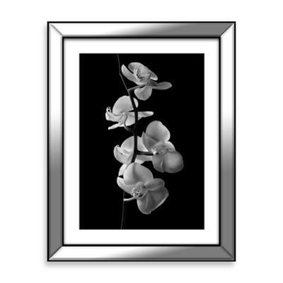 """Orchids 1"" Framed Art"