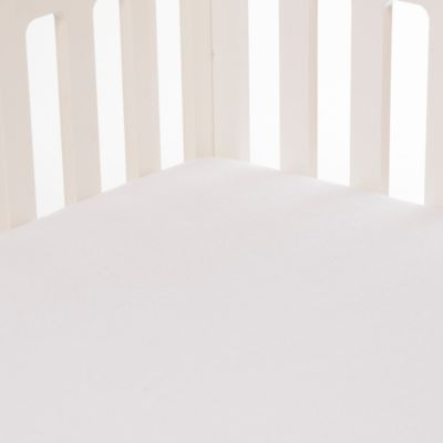 Glenna Jean Millie Softee Fitted Crib Sheet in White