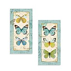 Butterfly Study Printed Canvas Wall Art