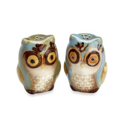 Natures Owl Salt & Pepper Shaker Set in Blue