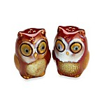 Gibson Home Natures Owl Salt & Pepper Shaker Set in Red