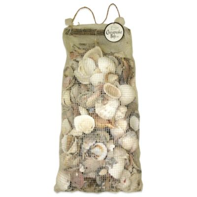 8 lb. Bag of Mixed Natural Sea Shells