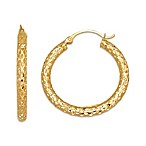 14K Yellow Gold Mesh Hoop Earring