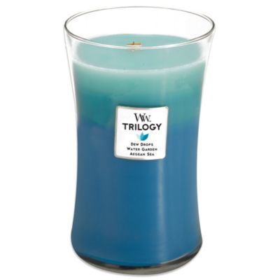 WoodWick® Gentle Rain Trilogy 22-Ounce Jar Candle