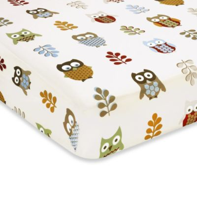 Sweet Jojo Designs Night Owl Fitted Crib Sheet in Owl Print