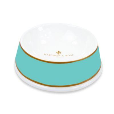 Turquoise Dog Bowls