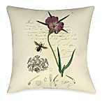 Naturalist's Montage IV Outdoor Toss Pillow
