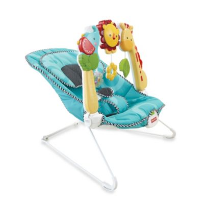 Fisher-Price® BFB08 2-in1 Sensory Stages Bouncer