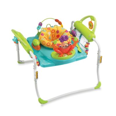 Fisher-Price® BFB21 First Steps Jumperoo™