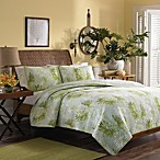 Tommy Bahama® Antigua Quilt in Green