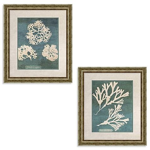 coral framed wall art bed bath beyond. Black Bedroom Furniture Sets. Home Design Ideas