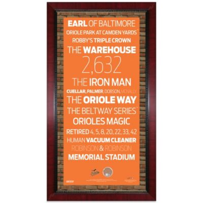 Steiner MLB Baltimore Orioles Framed Wall Art 16-Inch x 32-Inch Subway Sign