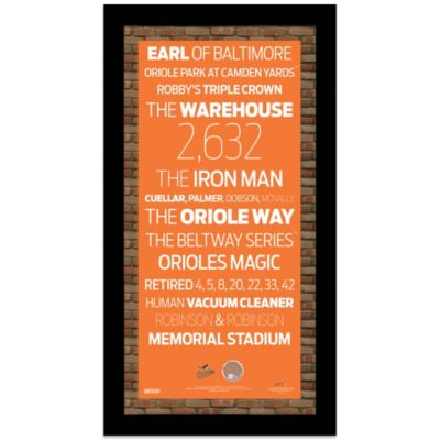 Steiner MLB Baltimore Orioles Framed Wall Art 9.5-Inch x 19-Inch Subway Sign