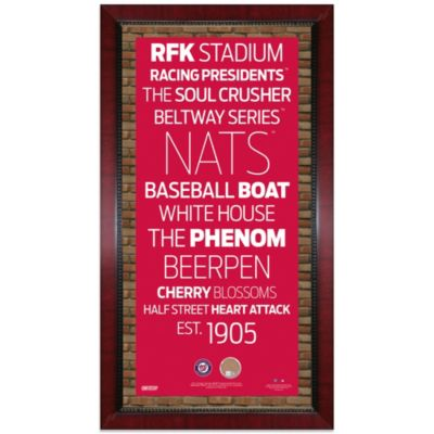 Steiner MLB Washington Nationals Framed Wall Art 16-Inch x 32-Inch Subway Sign