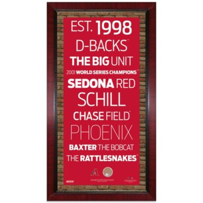 Steiner Arizona Diamondbacks 16-Inch x 32-Inch Framed Art with Authentic Dirt from Chase Field