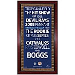 Steiner MLB Tampa Bay Rays Framed Wall Art 16-Inch x 32-Inch Subway Sign
