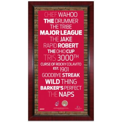 Steiner Cleveland Indians 16-Inch x 32-Inch Framed Art with Authentic Dirt from Jacobs Field