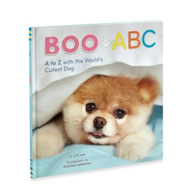 ABC Boo Book