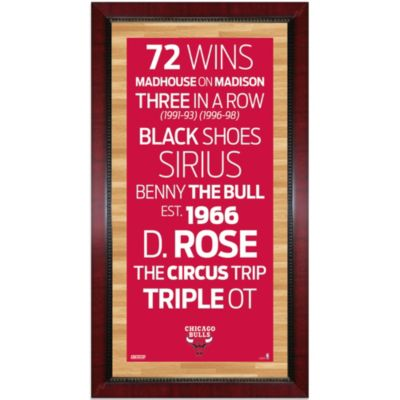 Steiner NBA Chicago Bulls Framed 16-Inch x 32-Inch Wall Art Subway Sign