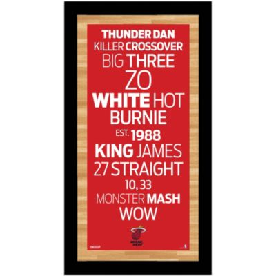Steiner Miami Heat 9-1/2-Inch x 19-Inch Framed Art