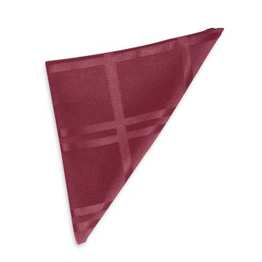 Origins Microfiber Napkin in Ruby (Set of 2)