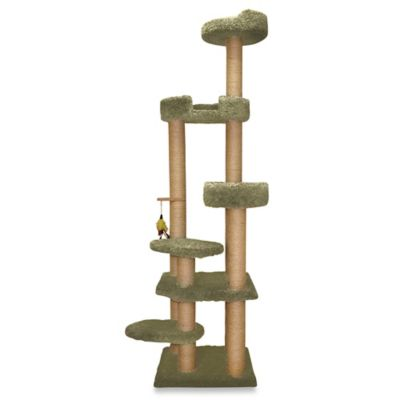 Family Cat Cat Tower with Sky Lounger and Lookout in Green