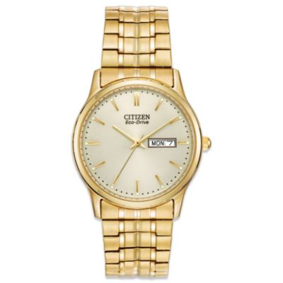 Citizen Men's Eco-Drive Expansion Goldtone Watch