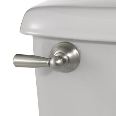 Sage Brushed Nickel Tank Lever