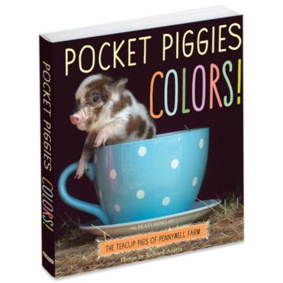 Pocket Piggies Colors! Board Book