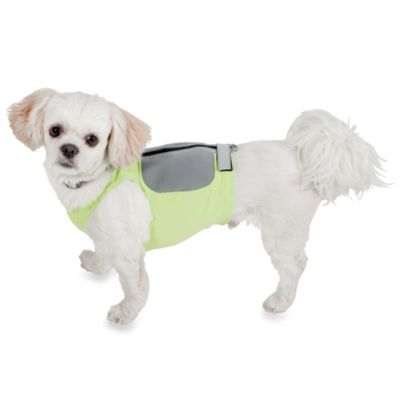 Extra-Small K9FITvest™ Starter Kit
