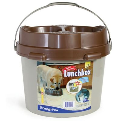 Big Dog Lunch Box