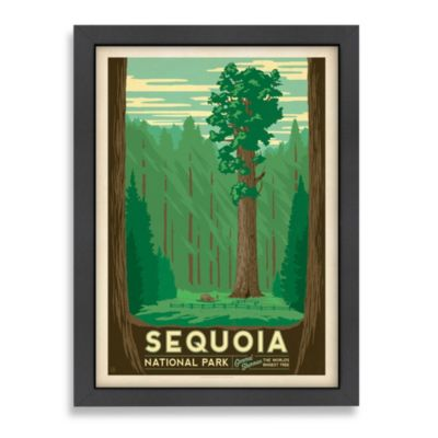 Americanflat Sequoia Tree Framed Wall Art
