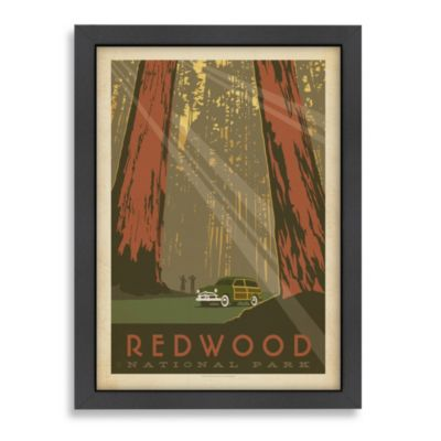 Americanflat Redwood Trees Framed Wall Art
