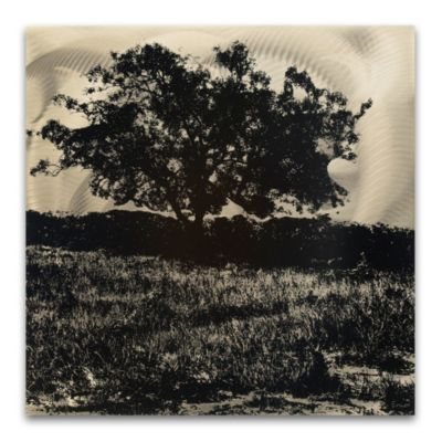 Black and White Tree Landscape Wall Art