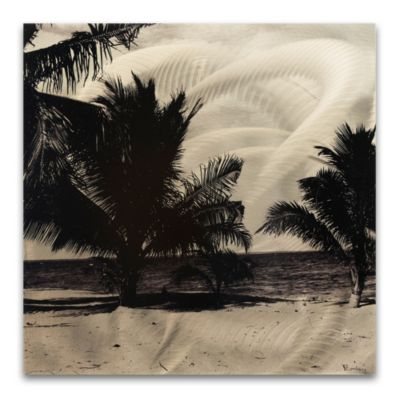 Black White Palm Trees Monochrome Indoor/Outdoor Wall Art