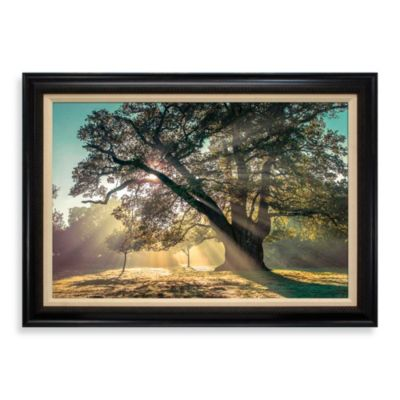 Breaking Through 31-Inch x 43-Inch Wall Art