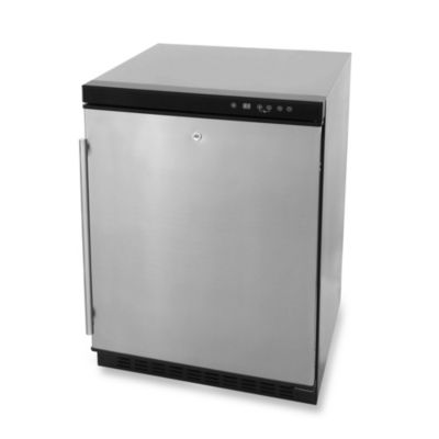Blaze Outdoor Products 5.5-Cubic Foot Outdoor Rated Compact Refrigerator