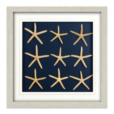 Starfish Shadowbox Wall Art
