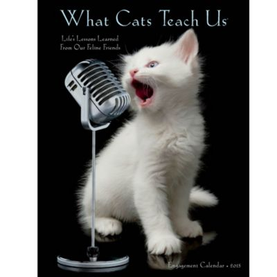 2015 What Cats Teach Us Engagement Calendar