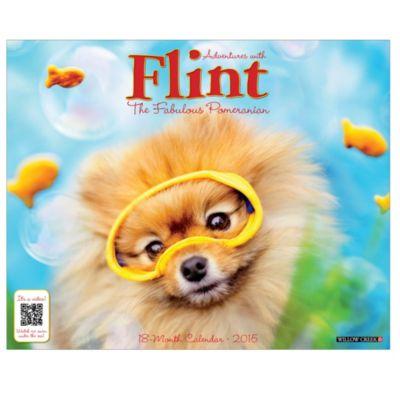 Flint the Pomeranian 2015 18-Month Wall Calendar