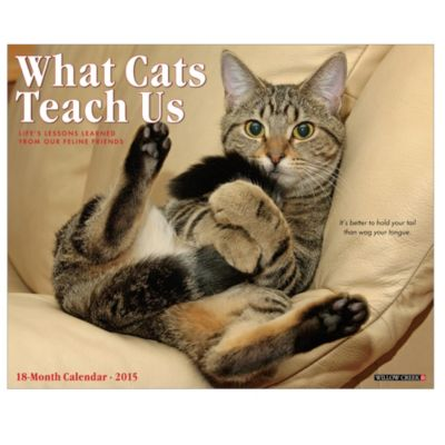 2015 What Cats Teach Us Wall Calendar
