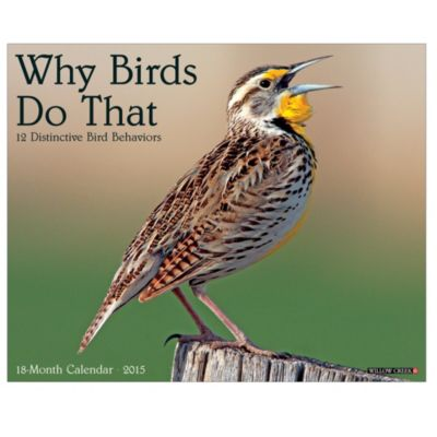 2015 Why Birds Do That Wall Calendar