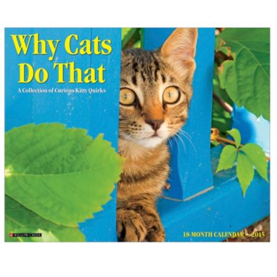 2015 Why Cats Do That Wall Calendar