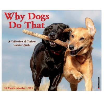 2015 Why Dogs Do That Wall Calendar