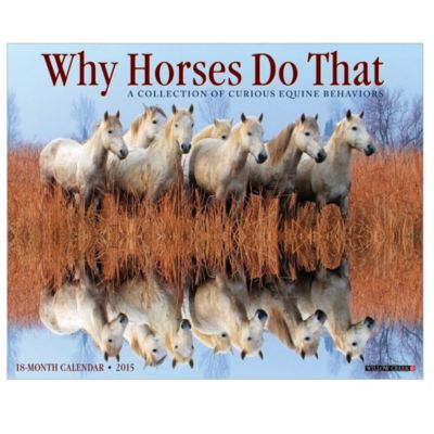2015 Why Horses Do That Wall Calendar
