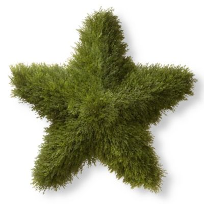 Outdoor Decorative Stars