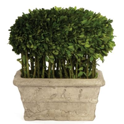 Sage Floral Boxwood Half Ball with Stems