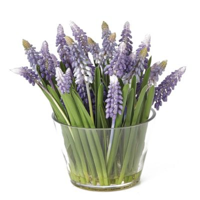 Sage Floral Muscari Arrangement in Glass Vase (Set of 4)