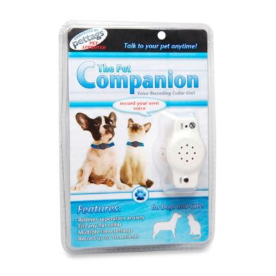 The Pet Companion by Hagen in White
